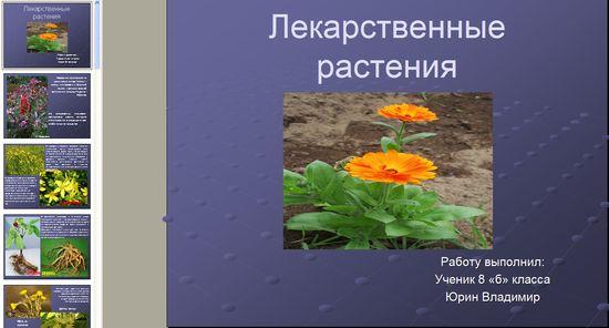 скачать презентацию на тему растения