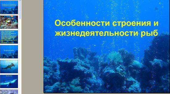 В презентации для школьников приводятся примеры хрящевых и костных рыб, их внутреннее строение и особенности.