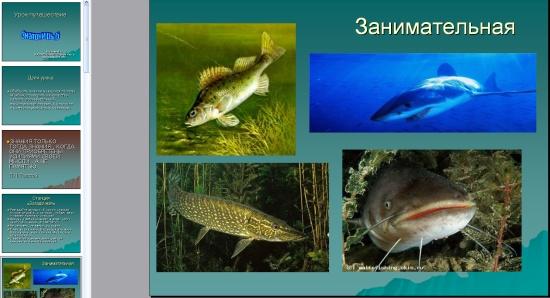 Рыба по теме презентации